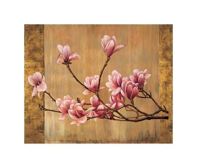 https://imgc.artprintimages.com/img/print/pink-magnolias_u-l-f7m5i10.jpg?p=0