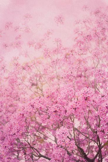 Pink On Pink I-Elizabeth Urquhart-Photo