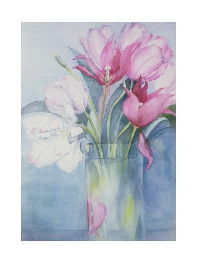 Pink Parrot Tulips and Marlette-Karen Armitage-Giclee Print
