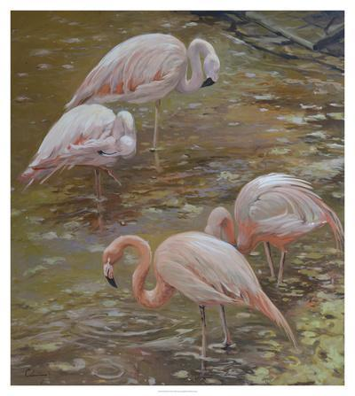 https://imgc.artprintimages.com/img/print/pink-passion_u-l-f8faq60.jpg?p=0