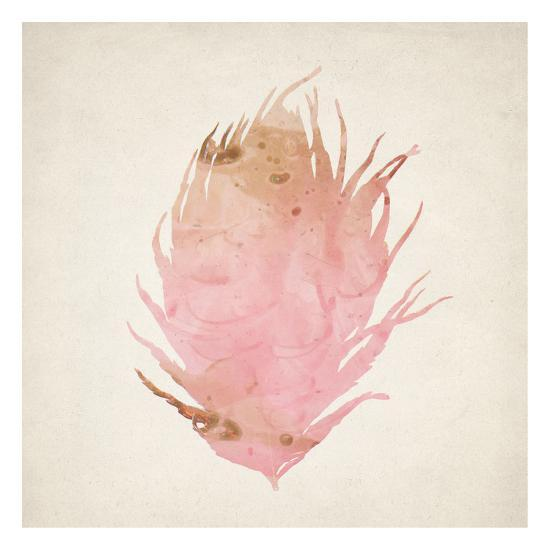 Pink Peacock 2-Kimberly Allen-Art Print