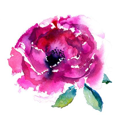 https://imgc.artprintimages.com/img/print/pink-peony_u-l-f995gw0.jpg?p=0