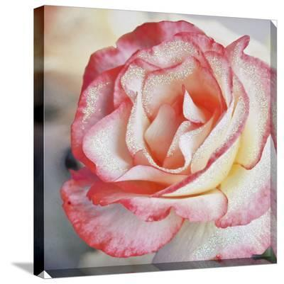 Pink Petal Rose Canvas with Glitter--Gallery Wrapped Canvas