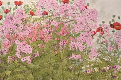 Pink Phlox and Poppies with a Butterfly-Linda Benton-Giclee Print
