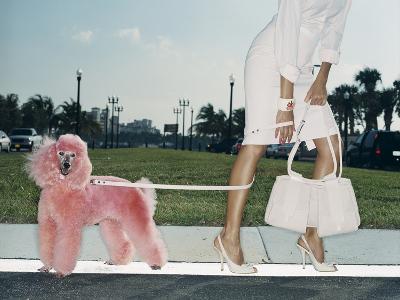 Pink Poodle-Arthur Belebeau-Photographic Print