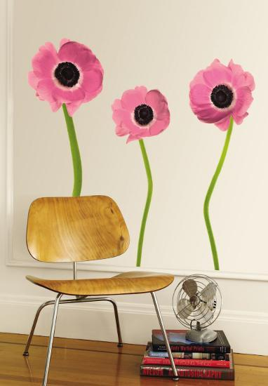 Pink Poppies--Wall Decal