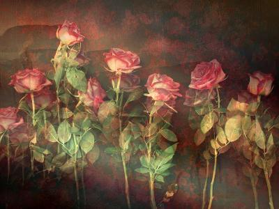 Pink Roses with Textures and Floral Ornaments-Alaya Gadeh-Photographic Print