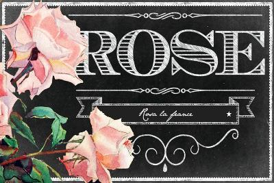 Pink Roses--Giclee Print