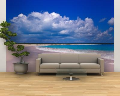 Pink Sand Beach, Harbour Island, Bahamas-Greg Johnston-Wall Mural – Large