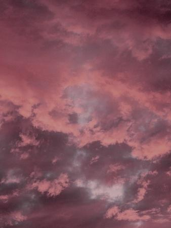 https://imgc.artprintimages.com/img/print/pink-sky_u-l-q1g67ge0.jpg?p=0