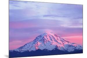 Pink Sunset Light on Mount Rainier in the Cascade Range, Washington State, USA