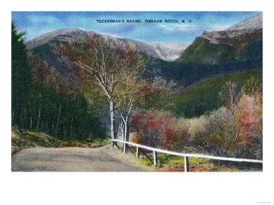Pinkham Notch, New Hampshire - View of Tuckermans Ravine-Lantern Press-Art Print