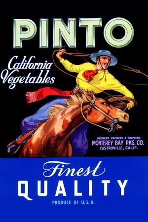 https://imgc.artprintimages.com/img/print/pinto-california-vegetable_u-l-q19qjec0.jpg?p=0