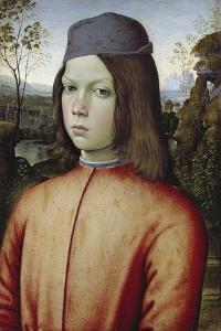Portrait of a Boy, C. 1480-85 by Pinturicchio