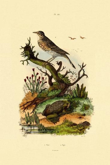 Pipa, 1833-39--Giclee Print