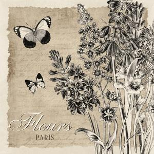 Bordered Fleurs Paris by Piper Ballantyne