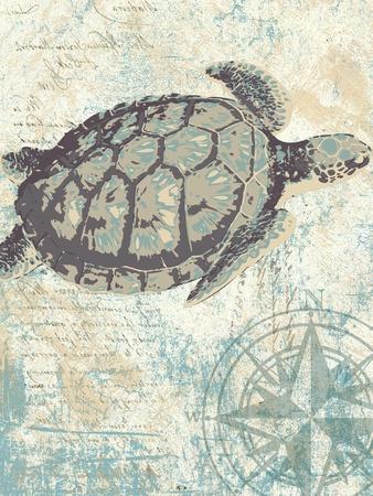 Sea Turtles I