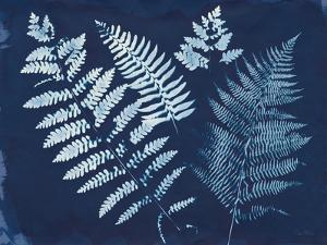 Nature By The Lake - Ferns II by Piper Rhue