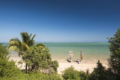 Pirogue, a Traditional Madagascar Sailing Boat, Ifaty Beach, Madagascar, Africa-Matthew Williams-Ellis-Photographic Print