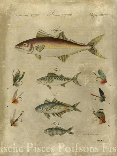 Pisces Composition II--Art Print