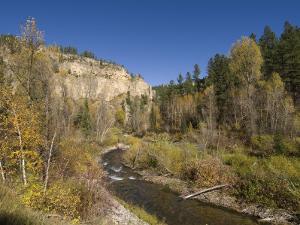 Spearfish Canyon, Black Hills, South Dakota, United States of America, North America by Pitamitz Sergio