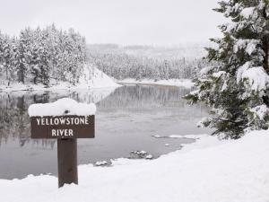 Yellowstone River, Yellowstone National Park, UNESCO World Heritage Site, Wyoming, USA by Pitamitz Sergio