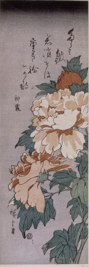 Pivoines-Ando Hiroshige-Giclee Print