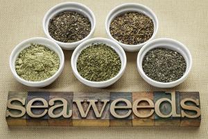 Bowls of Seaweed Diet Supplements (Bladderwrack, Sea Lettuce, Kelp Powder, Wakame and Irish Moss) by PixelsAway