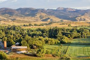 Irrigated Foothills Farmland in Sunrise Light, Belvue near Fort Collins in Northern Colorado by PixelsAway