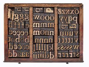 Letterpress Wood Type Printing Blocks in Old Typesetter Drawer Isolated on White by PixelsAway