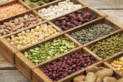 Old Wooden Typesetter Box with 16 Samples of Assorted Legumes: Green, Red and French Lentils, Soybe