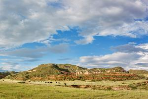 Red Mountain Open Space Panorama - Mountain Ranch Landscape in Northern Colorado near Fort Collins, by PixelsAway