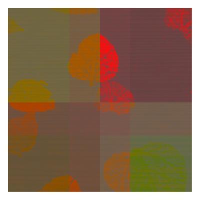 Placid-Tony Pazan-Art Print
