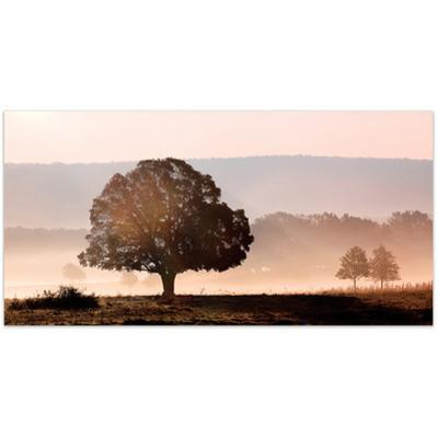 Plain View - Free Floating Tempered Glass Wall Art