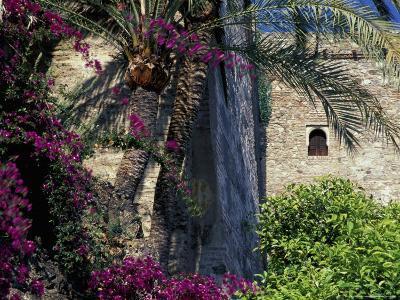 Plams, Flowers and Ramparts of Alcazaba, Malaga, Spain-John & Lisa Merrill-Photographic Print