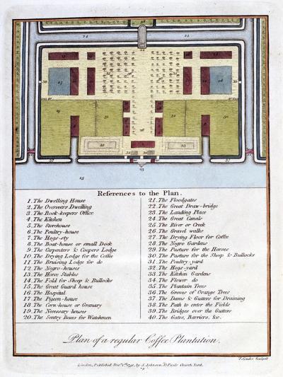 Plan of a Regular Coffee Plantation, 1813-John Gabriel Stedman-Giclee Print