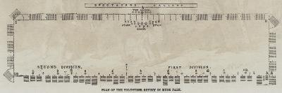 Plan of the Volunteer Review in Hyde Park--Giclee Print