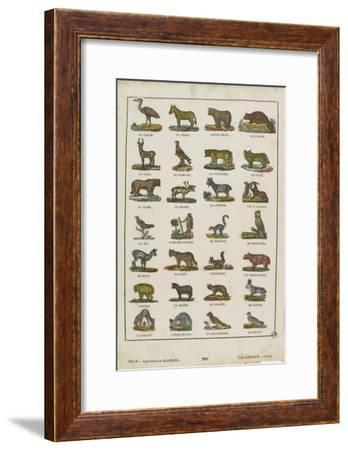 Planche animalière--Framed Giclee Print