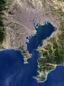 Tokyo, Satellite Image by PLANETOBSERVER