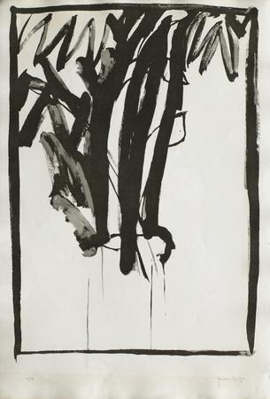 https://imgc.artprintimages.com/img/print/planta-de-salo-ii_u-l-f123lt0.jpg?p=0