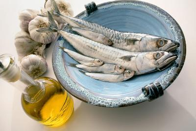 Plate of Mackerel-Erika Craddock-Photographic Print