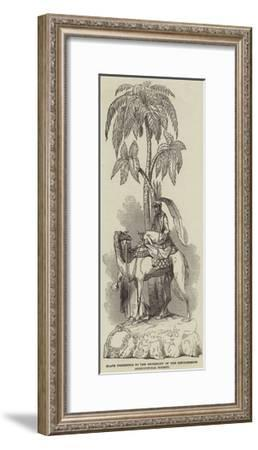 Plate Presented to the Secretary of the Lincolnshire Agricultural Society--Framed Giclee Print