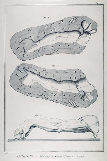 Plate Showing Plaster Casting--Giclee Print