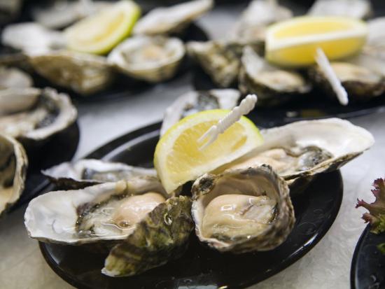 Plates of Fresh Oysters, Sydney's Fish Market at Pyrmont, Sydney, Australia-Andrew Watson-Photographic Print