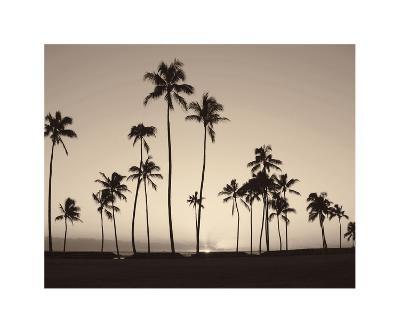 Platinum Palms II-Michael Neubauer-Giclee Print
