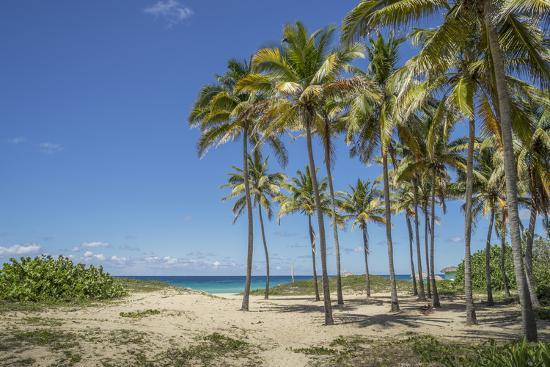 Playa De L'Este, Havana, Cuba, West Indies, Caribbean, Central America-Angelo Cavalli-Photographic Print