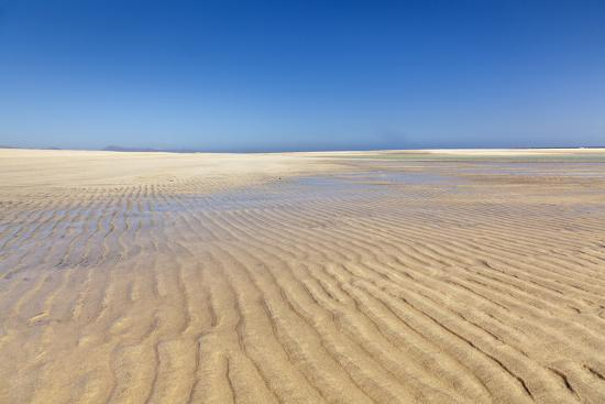 Playa De Sotavento, Risco Del Paso, Fuerteventura, Canary Islands, Spain, Atlantic, Europe-Markus Lange-Photographic Print