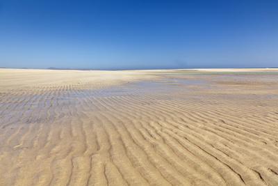 https://imgc.artprintimages.com/img/print/playa-de-sotavento-risco-del-paso-fuerteventura-canary-islands-spain-atlantic-europe_u-l-pnfewd0.jpg?p=0