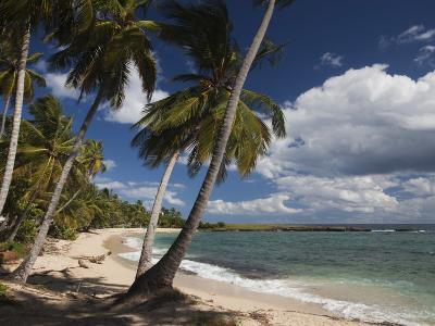 Playa El Frances Beach, El Frances, Samana Peninsula, Dominican Republic-Walter Bibikow-Photographic Print