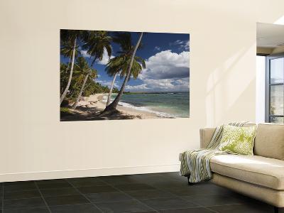 Playa El Frances Beach, El Frances, Samana Peninsula, Dominican Republic-Walter Bibikow-Wall Mural